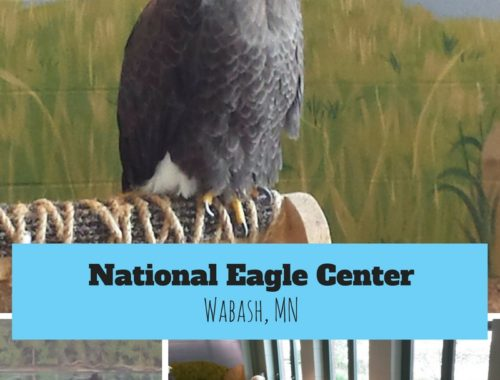 National Eagle Center in Wabasha