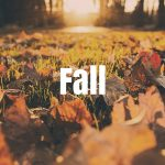 Fall Activities in Minnesota