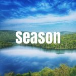Search By Season, Spring, Summer, Winter, Fall