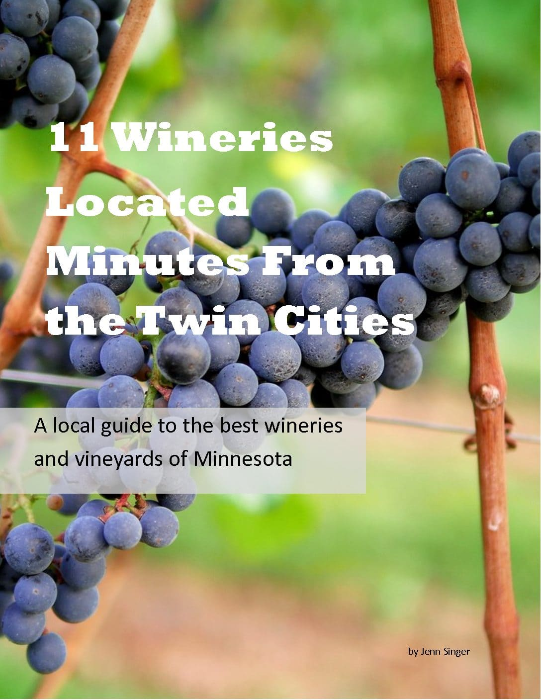 11 Wineries Located Minutes Form the Twin Cities