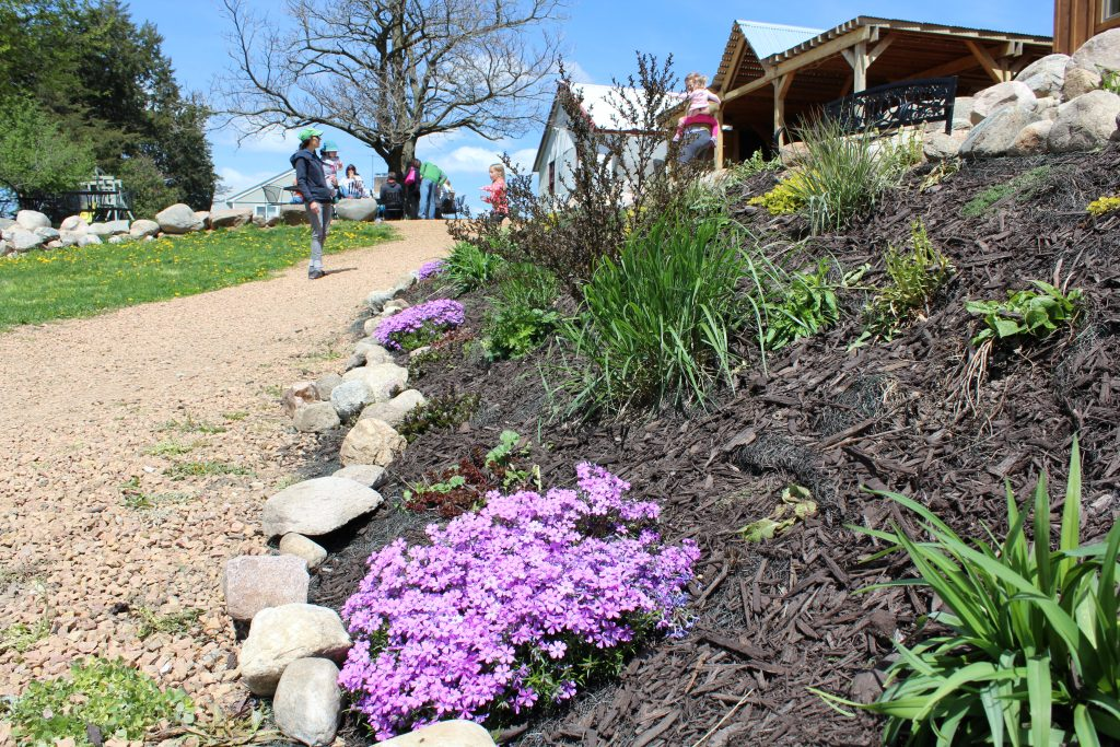 Landscaping of Schram Grounds