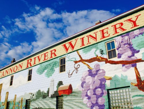 Cannon River Winery Mural
