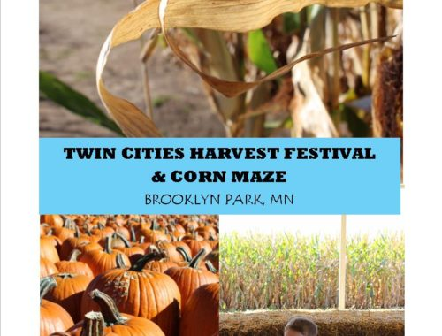 The Twin Cities Harvest Festival and Corn Maze in Brooklyn Park MN
