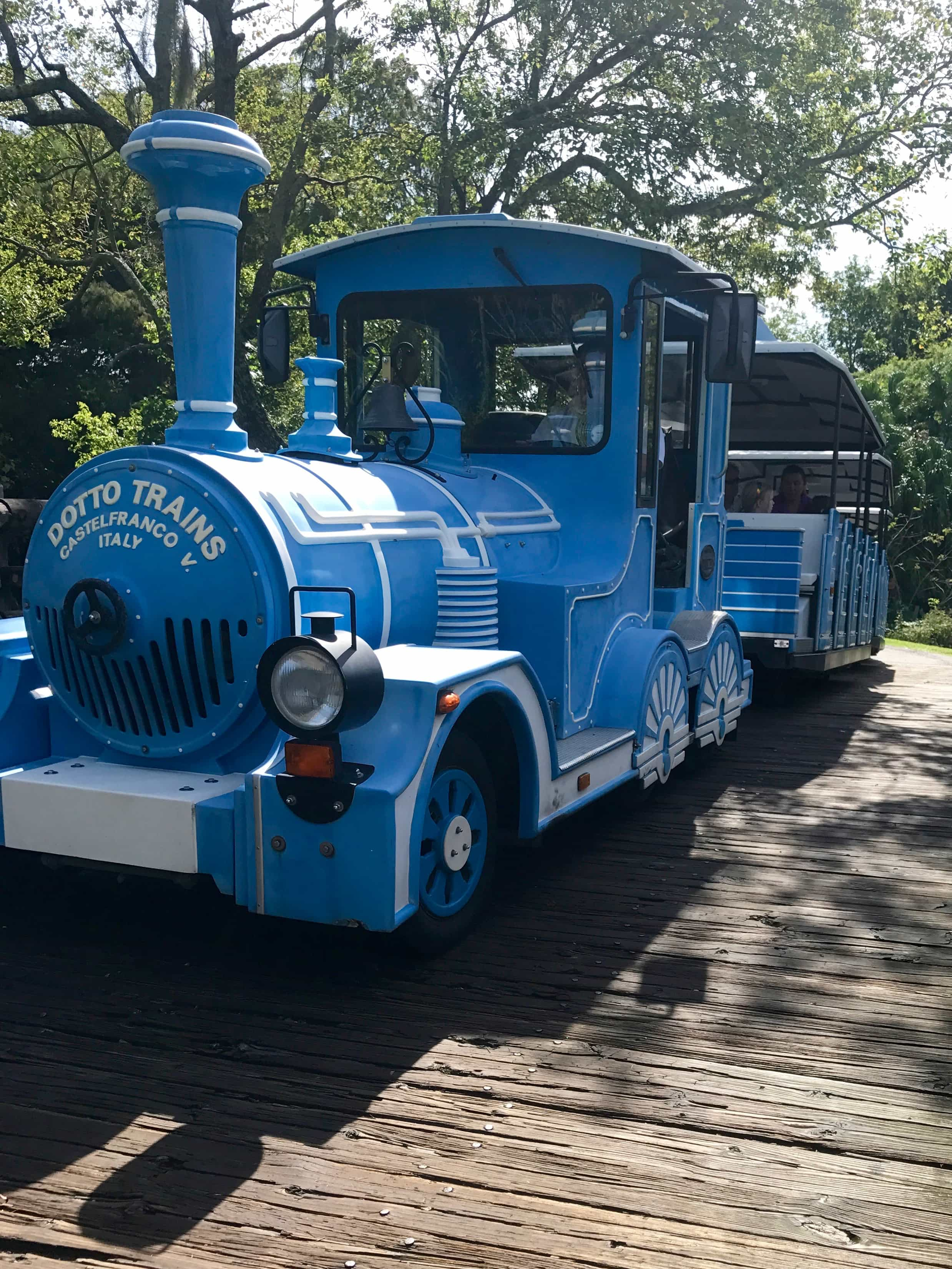 The SWAMP Train at the Audubon Zoo