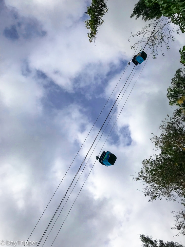 The Sky Ride at the San Diego Zoo