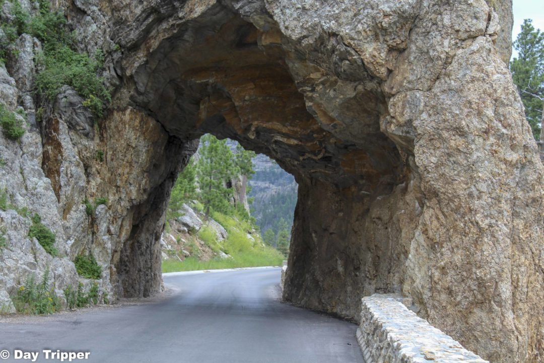 The tunnels of Needles Highway